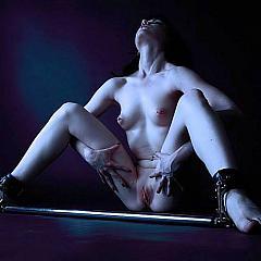 BDSM masters.