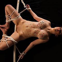 BDSM servitude.
